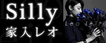silly_pv.jpg